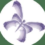 Lacasa Butterfly