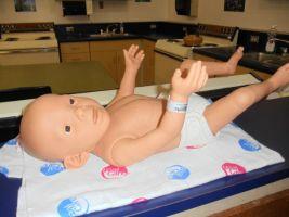 Fetal Alcohol Spectrum Disorders Workshop