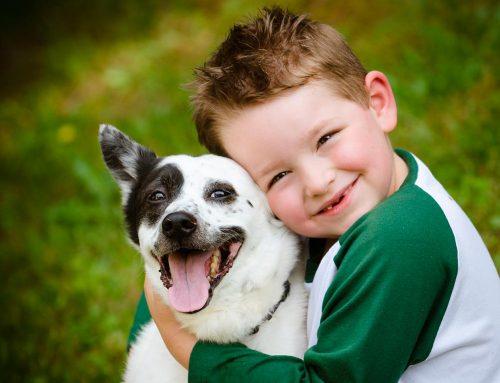 PetSmart Charities Grant